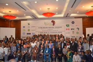 Reviving agricultural extension in Africa