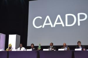 CAADP uses CTA developed KM Scans
